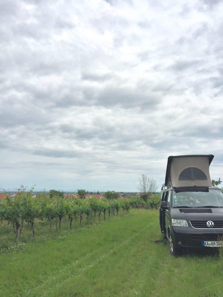 Kleine Tour durch die Pfalz, Edenkoben, Leinsweiler, Flemlingen.